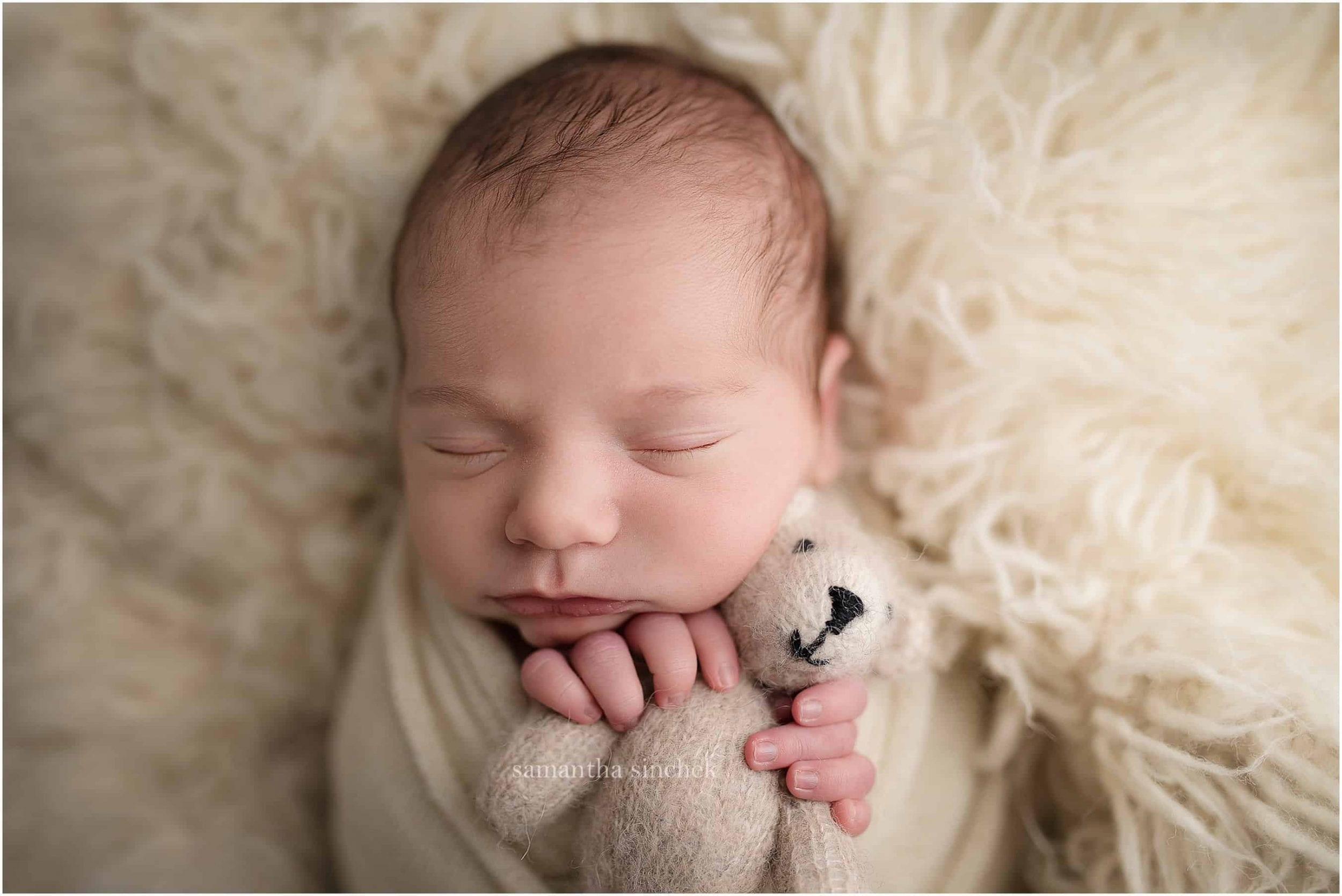 newborn holds small bear during pictures with Samantha sinchek photography of Cincinnati Ohio