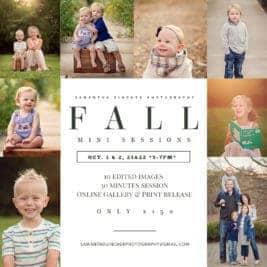 cincinnati fall mini session