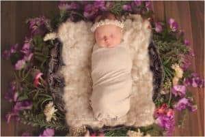 newborn photographer in cincinnati samantha sinchek baby